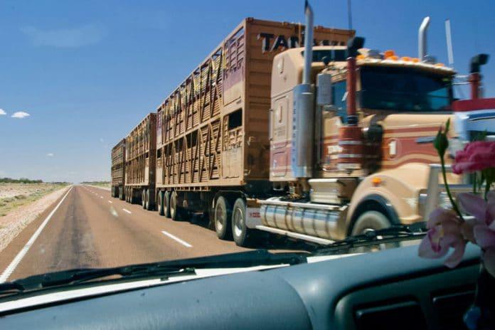 De Stuart Highway OutbackAustralie