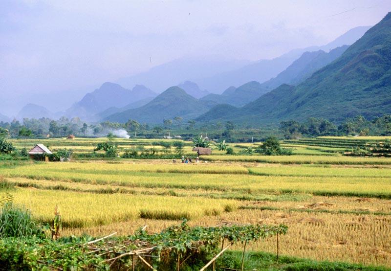 Bergen Noord Vietnam ontdekken