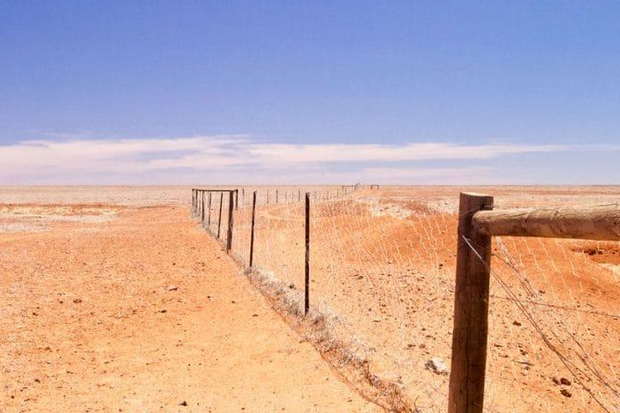 Het dingo hek in Outback Australie