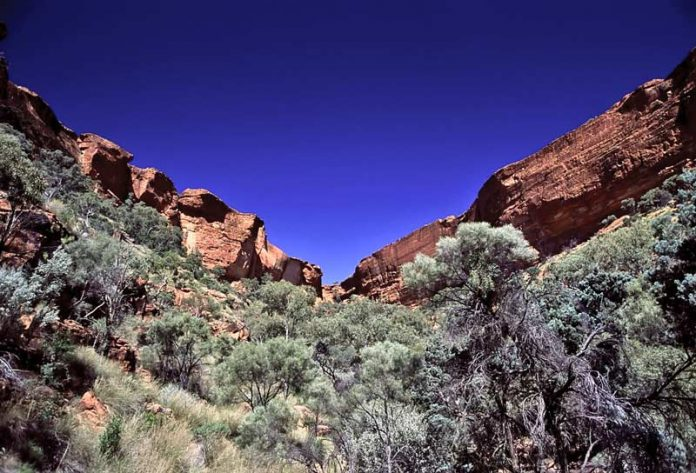 Overweldigende Kings Canyon Outback Australie