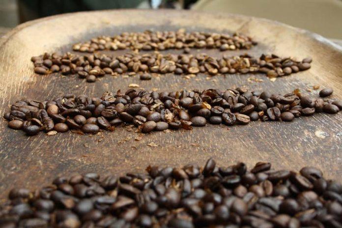 Panama vakantie koffiebonen vulkaan