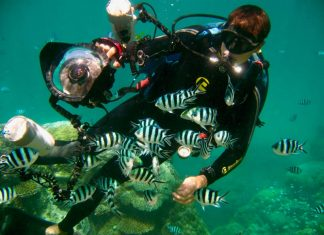 Duiken in Great Barrier Reef Queensland Australie