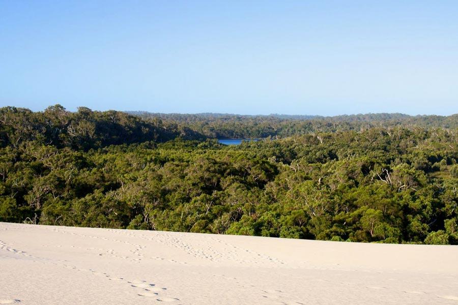 West Australie Pemberton Yeagarup