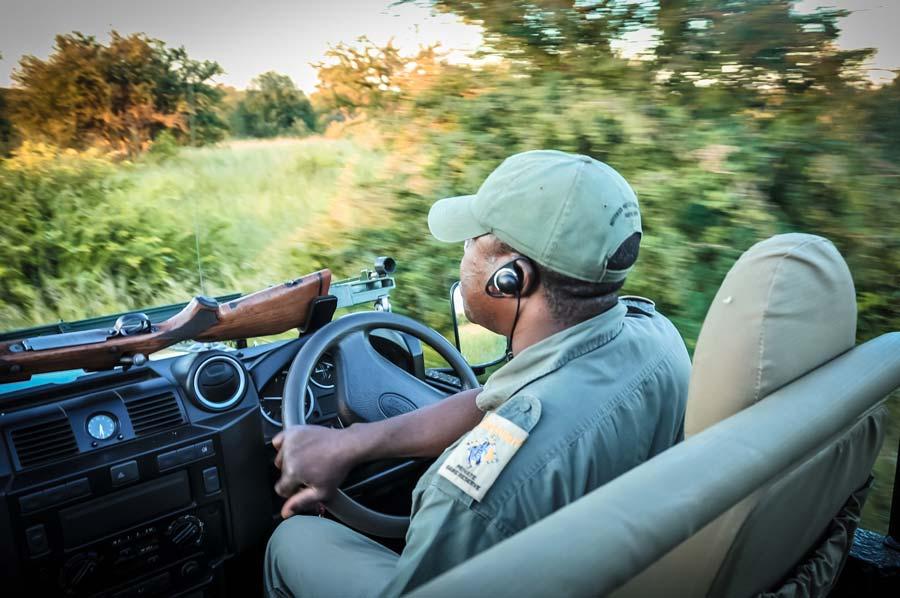 Landrover Krugerpark Afrika