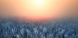 Ijskoud Lapland Finland