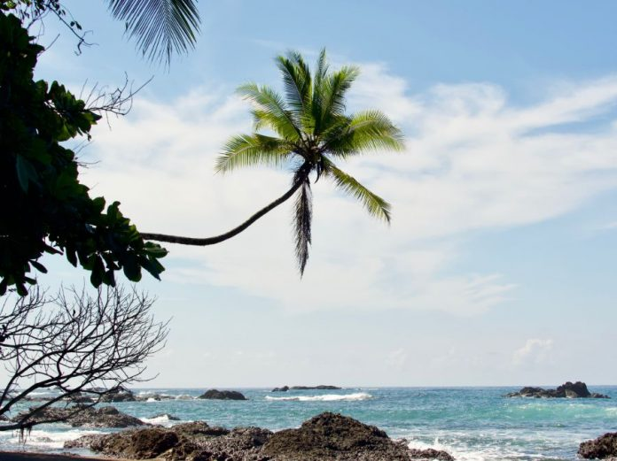 Costa Rica natuur Corcovado