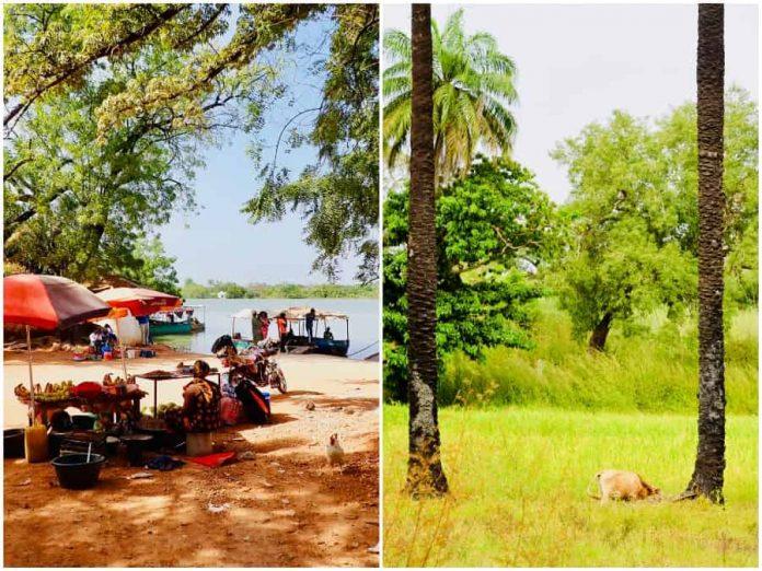 Vakantie naar Gambia