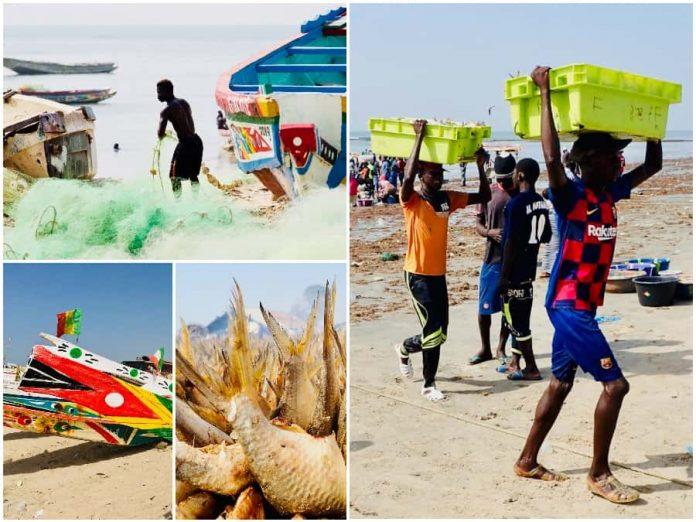 Vakantie naar Gambia Tanji bezoeken